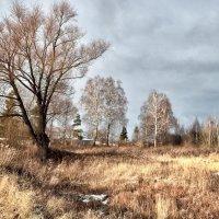 img_9545 :: Сергей Козлов