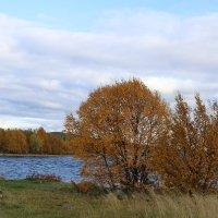 Осень у Имандры :: Ольга