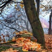 Осенняя :: Garik