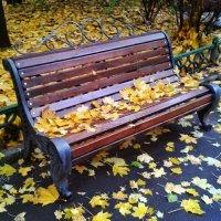 На скамейке осень... :: Сергей Беличев