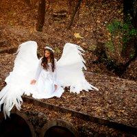 ангел :: Натаья Макаренкова