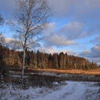 Начало зимы :: Татьяна