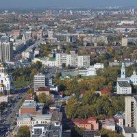 Центр города с высоты :: Елена Викторова