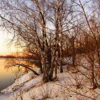 Наступают холода :: Андрей Снегерёв