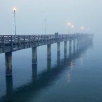 Туман. :: Павел Дунюшкин