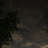 А лес стоит загадочный :: Анатолий Кувшинов