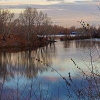 Тишина осеннего утра :: Екатерина Торганская