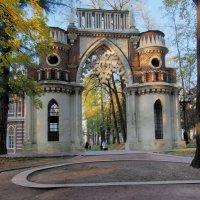 Виноградные ворота :: Евгений Седов