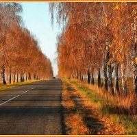 Дорога в осень :: Виктор Марченко