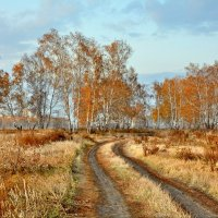По осенней дороге :: Mikhail Irtyshskiy