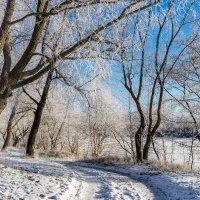 дорога в зиму :: Михаил
