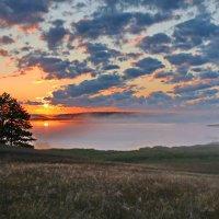 Утро в деревне... :: Андрей (Skiff) Звонарёв
