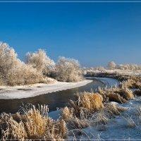 Первый день зимы :: Наталия Женишек