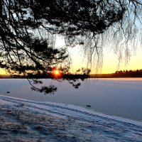 Восход солнца :: Ольга Митрофанова