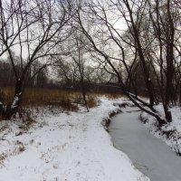 Скромное обаяние декабря :: Андрей Лукьянов