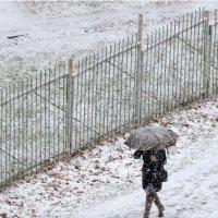 А снег идёт! :: Валентина  Нефёдова
