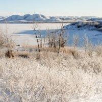 первый зимний день :: Александр Никишков