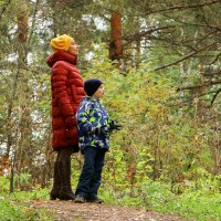 В Алтайском лесу :: STATUS974