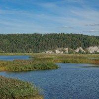Озеро Плешки :: Алексей Сметкин
