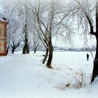 Зимний день :: Нэля Лысенко