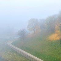 Туман октября :: Алексей Румянцев