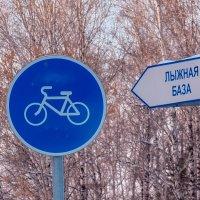 За лыжами на велике. :: Ольга
