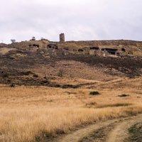 вид на монастырь из пустыни :: Лариса Батурова