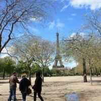 Увидеть Париж.....надо, может не  в эти дни. :: ZNatasha -