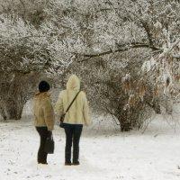 Зимние картинки. фото-5. :: Nata