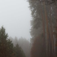 """"""" Утро туманное , утро седое..."""" :: Андрей Нибылица"""