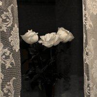 Цветы от мужа на годовщину свадьбы :: Светлана