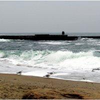 Морской пейзаж :: Людмила