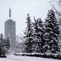 24 этажа :: ИгорьОк Бородин