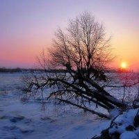 Зимнее :: Lusi Almaz