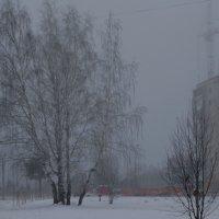 Туманное утро :: Александр Подгорный