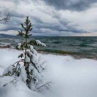 Декабрь на Байкале :: Татьяна Дубровина