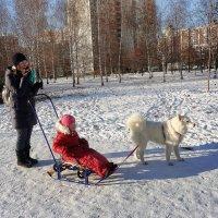 Доката на старте! :: Татьяна Помогалова