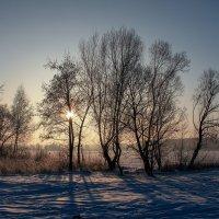 Волга зимой :: Владимир Зеленцов