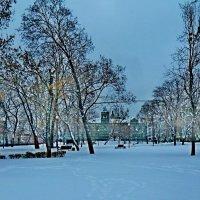 В городском парке! :: ирина