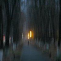 Ночь в парке :: Татьяна Львова