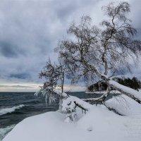 Много снега на Байкале :: Татьяна Дубровина