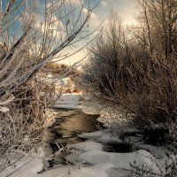 Зимние картинки . :: Va-Dim ...