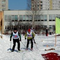 лыжники :: Владимир