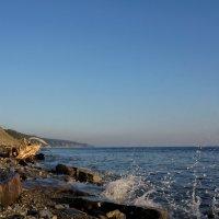 Побережье Черного моря :: Виктория Попова