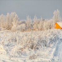 Картинка, зимняя, полуденная... :: Александр Никитинский