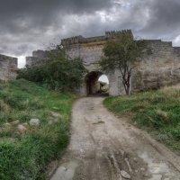 Вид на Азовские ворота крепости. :: Анатолий Щербак