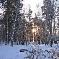 Зимний вечер :: Лидия (naum.lidiya)