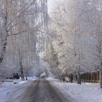 Зимние красоты :: Петр Беляков