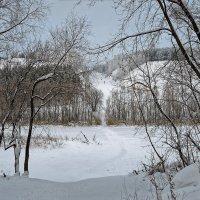 Река Иня :: Дмитрий Конев