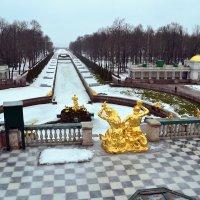 Зима в Петергофе :: Ольга